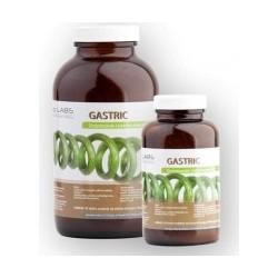 GASTRIC Linia - Oczyszczanie i stabilna praca jelit 120g